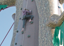 Climbing Wall Descenders