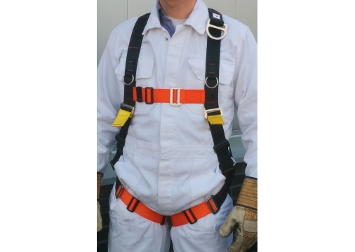 Safety Harnesses FBH-10